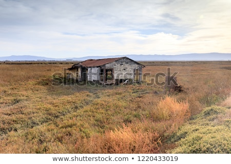 abandoned building at drawbridge the last remaining ghost town in san francisco bay area stock photo © yhelfman