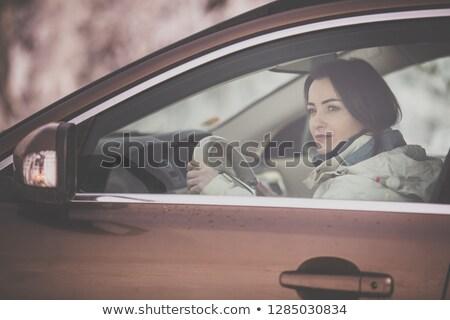 Mooie jonge vrouw rijden auto uitnodiging reizen Stockfoto © lightpoet