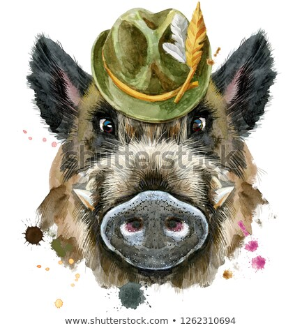 Watercolor portrait of wild boar with green hat Stock photo © Natalia_1947