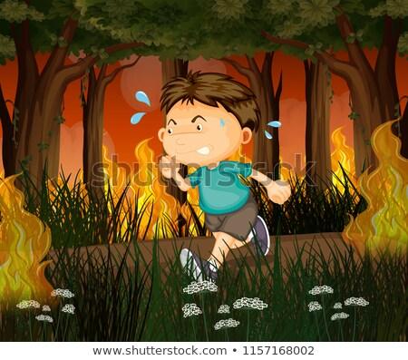 Chłopca uruchomić z dala wildfire lasu ilustracja Zdjęcia stock © colematt