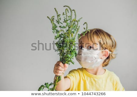 The boy is allergic to ragweed. In a medical mask, he holds a ragweed bush in his hands. Allergy to  Stock photo © galitskaya