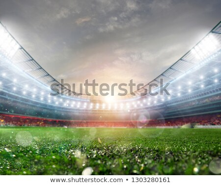 Midfield of grass soccer stadium field with headlights Stock photo © alphaspirit