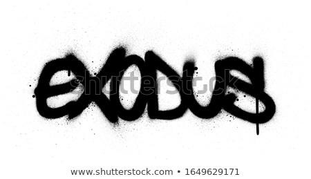 Grafite palavra preto e branco grafite vôo Foto stock © Melvin07