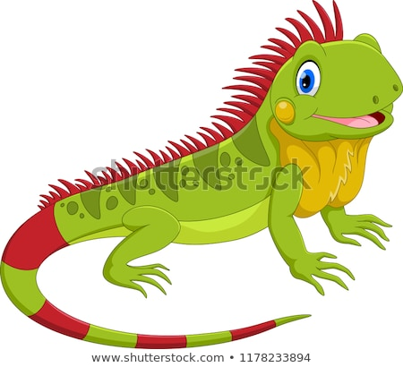 Stockfoto: Cartoon · groene · leguaan · dier · karakter · illustratie