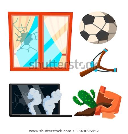 Soccer Broken Window, Pot With Flowers, Notebook Vector. Cartoon Illustration Stock photo © pikepicture