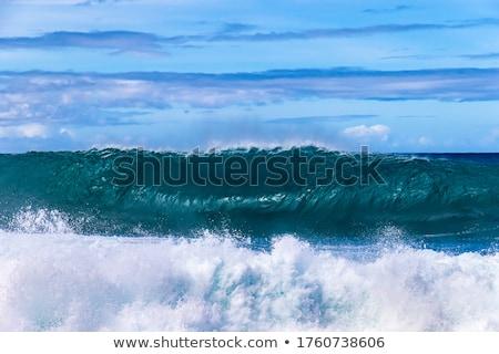 Groot zee zeegolf spatten witte schuim Stockfoto © MarySan