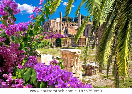 Colosseum in eternal city of Rome view from Forum Romanum Stock photo © xbrchx