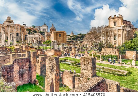 Scenic aerial view over the ruins of the Roman Forum in Rome stock photo © xbrchx