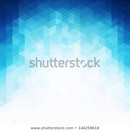 Geometrica abstract vettore immagine business texture Foto d'archivio © lemony