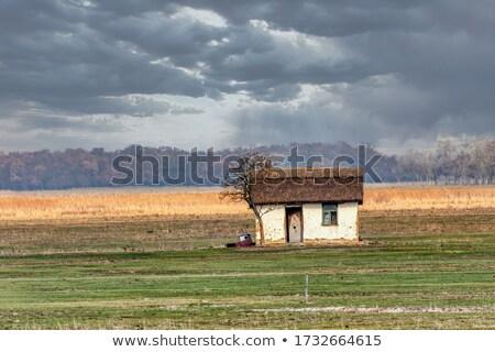 Domu węgierski wygaśnięcia parku Węgry słynny Zdjęcia stock © artush