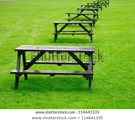 Row of empty tables and benches in green grass Stock photo © Giulio_Fornasar