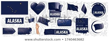Vector establecer banderas americano Alaska diferente Foto stock © butenkow