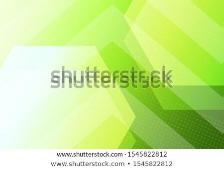abstract creative green based web template Stock photo © pathakdesigner