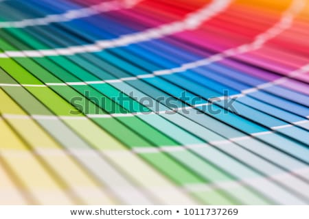 Designer and decorator with a color chart Stock photo © photography33