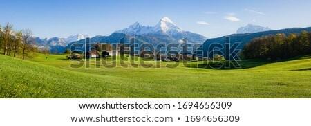 bavaria landscape Stock photo © magann