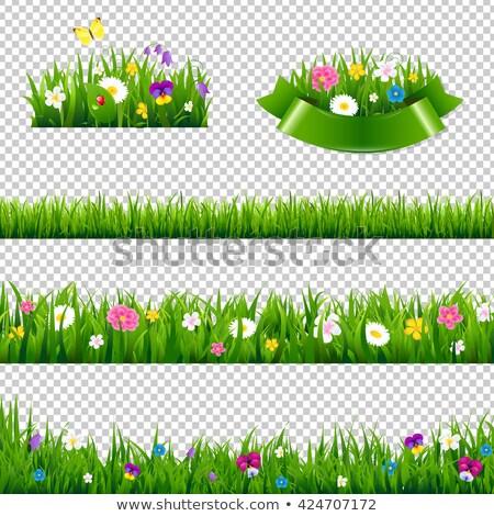 Stockfoto: Gras · bloemen · verkoop · bal · helling