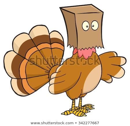 Турция · изолированный · белый · вектора · ребенка - Сток-фото © hittoon