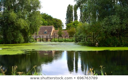 Eski ev gölet örnek manzara ev arka plan Stok fotoğraf © colematt