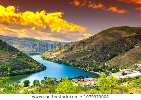 douro river stock photo © zittto