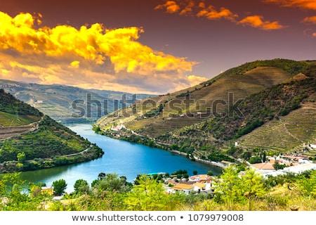 douro river Stock photo © zittto