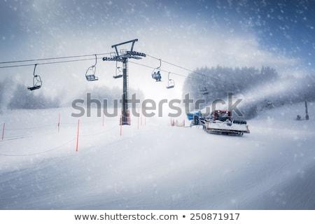 雪 5 青 森林 自然 ストックフォト © smuki