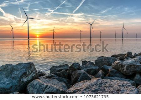 Landscape with dike Stock photo © ivonnewierink