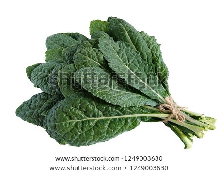 lacinato kale stock photo © rbiedermann