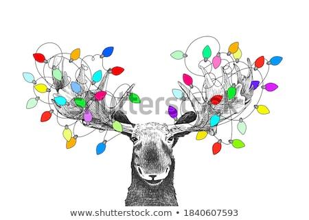 Jávorszarvas karácsony dekoráció fehér terv ajándék Stock fotó © homydesign