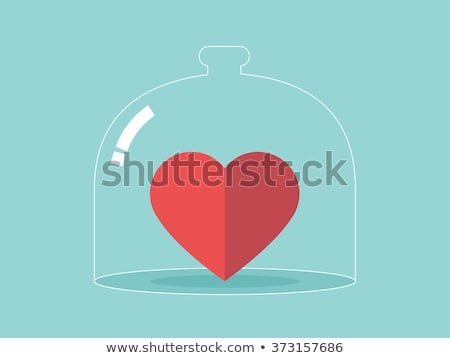 concept of protection and love of money vector illustration Stock photo © konturvid