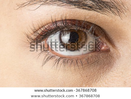 belo · masculino · olho · azul · negócio - foto stock © simply