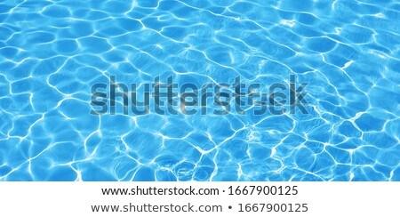 sun reflecting on water Stock photo © ldambies