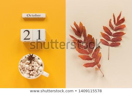 21st october stock photo © oakozhan