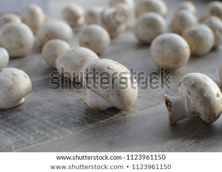 Champignons on wood Stock photo © AGfoto