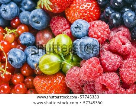 Abundantly fruiting bilberry Stock photo © pzaxe