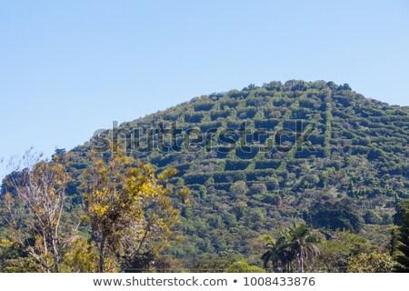 Hill seen from Apaneca Stock photo © benkrut
