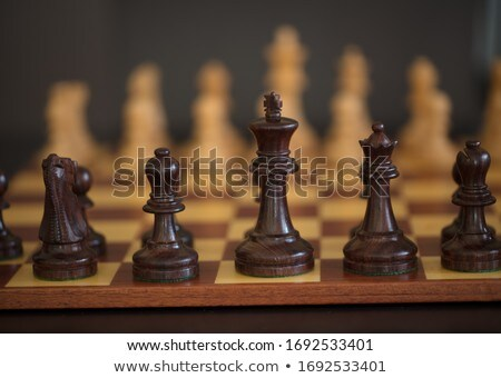 wooden chess piece stock photo © bdspn