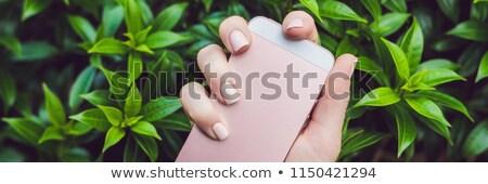 Kezek rózsaszín körmök tart telefon szalag Stock fotó © galitskaya