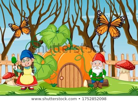 гном тыква дома саду бабочка Cartoon Сток-фото © bluering