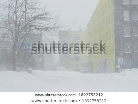 Hóesés erdő nehéz hegy hó fák Stock fotó © skylight