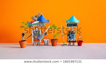 Gelecek ev işi robot 3d render temizlemek cyborg Stok fotoğraf © AlienCat