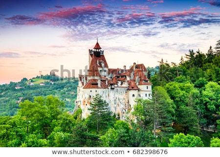 Дракула замок башни отруби Румыния средневековых Сток-фото © tony4urban