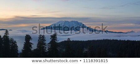 Mount Saint Helens pôr do sol ver floresta Washington céu Foto stock © davidgn