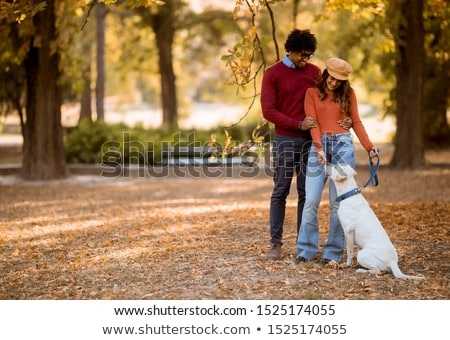 Multiracial couple walking with dog in autumn park Stock photo © boggy
