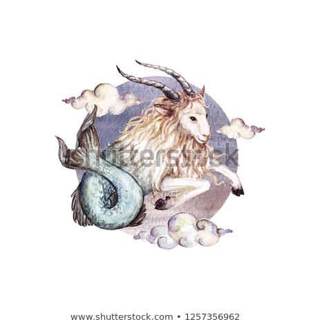 horoszkóp · állatöv · felirat · tenger · kecske · asztrológia - stock fotó © trikona