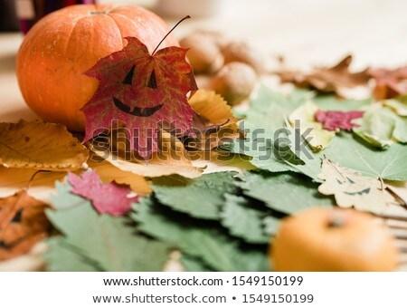 Dry colorful autumn foliage, big ripe pumpkin and drawn faces on leaves Stock photo © pressmaster