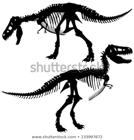 TRex Dinosaur Silhouette Stock photo © Krisdog