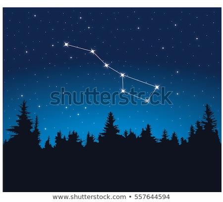 вектора · созвездие · большой · аннотация · природы · свет - Сток-фото © cteconsulting