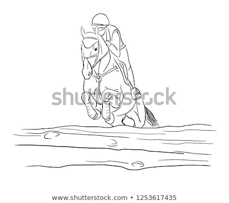 sportsman on horse overcomes barrier stock photo © oleksandro