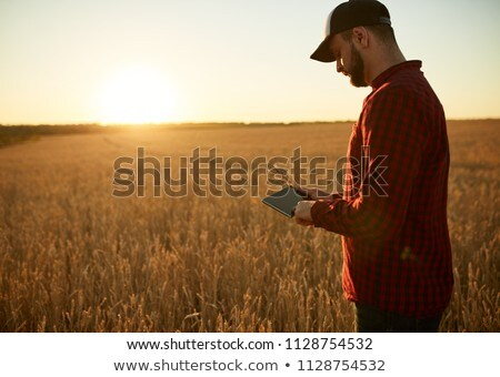 Inteligente moderno agricultura masculino Foto stock © stevanovicigor