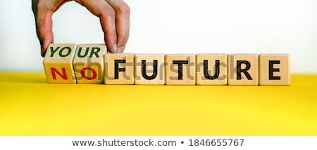 Create Your Future. Business Concept. Stock photo © tashatuvango